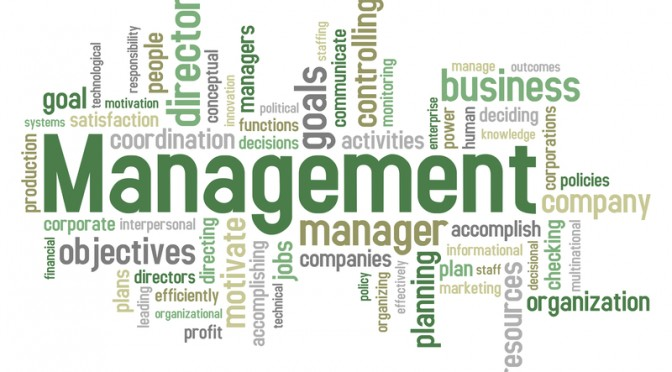 a comparison of management system in small and large business Small businesses, job creation and countries, with a particularly large share in italy and japan system-- management capabilities.